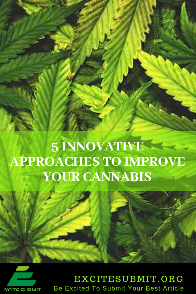 5 Innovative Approaches To Improve Your Cannabis